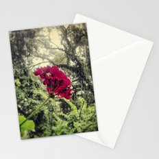 Hello, Tallahassee Stationery Cards