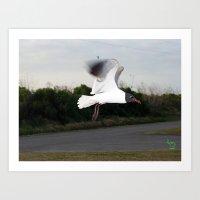 Flight... Art Print