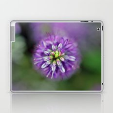 Hebe from above Laptop & iPad Skin