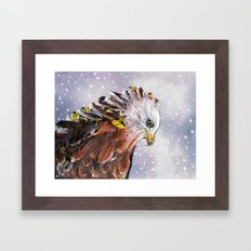 Sad  Hawk Framed Art Print