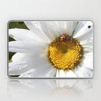 Lady Bug And Daisy Laptop & iPad Skin