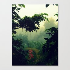 Humid Canvas Print
