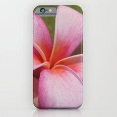 Plumarias in Hawaii Slim Case iPhone 6s