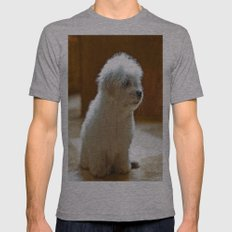 Coton de Tulear Puppy Mens Fitted Tee Athletic Grey SMALL