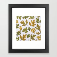 Parsley Autumn Framed Art Print