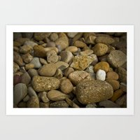 Lonely white pebble Art Print
