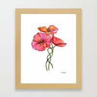 Peach & Pink Poppy Tangle Framed Art Print