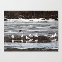 Walking On Water Canvas Print