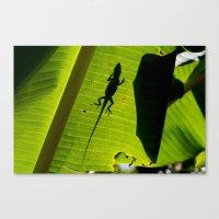 Lizard On A Leaf Canvas Print