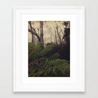Rainforest No.11 Framed Art Print