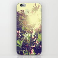 The Climb iPhone & iPod Skin
