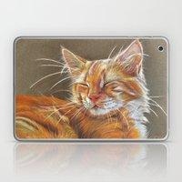 Sleeping Ginger Kitten C… Laptop & iPad Skin
