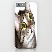Tiger Cat iPhone 6 Slim Case