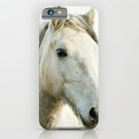 iPhone & iPod Case featuring White Horse Portrait by jacqi