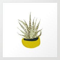 Zebra Cactus Art Print