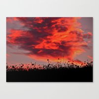 Sun Sets in the Field Canvas Print