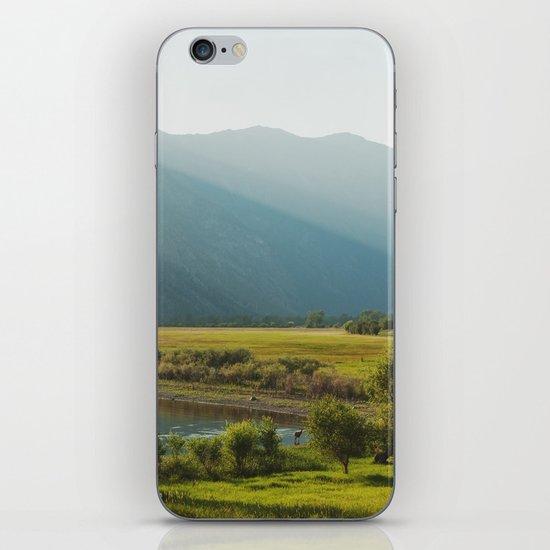 Wading Deer iPhone & iPod Skin