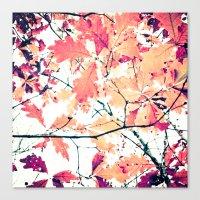 October Oak Canvas Print
