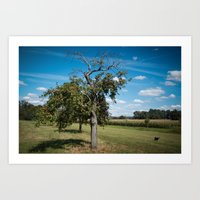 Dog With Appletree Art Print