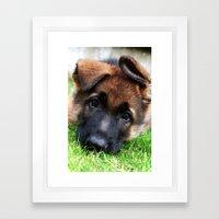 Playful Puppy. Framed Art Print