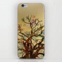 Magic Tree iPhone & iPod Skin