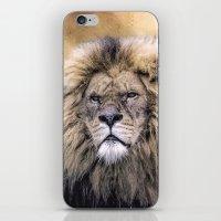 African Pride iPhone & iPod Skin
