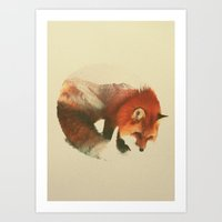 snow Art Prints featuring Snow Fox by Andreas Lie