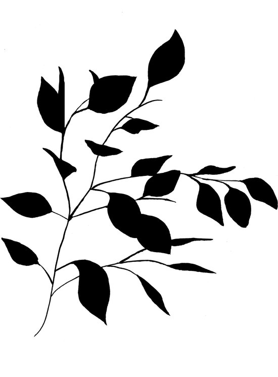 Leaves Black Art Print