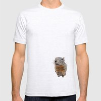 Curiosity Mens Fitted Tee Ash Grey SMALL