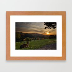 Serenity at Freisen Wildpark Framed Art Print