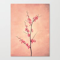 The Passion Of Pink Canvas Print
