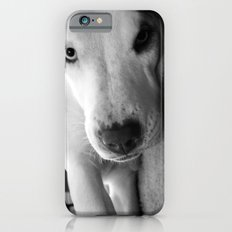 I Triple Dog Dare You iPhone 6 Slim Case