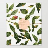 Leaves + Dots Canvas Print