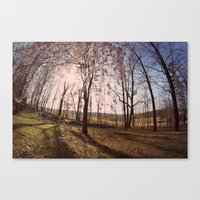 the Flowered Tree Canvas Print