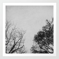 2 Trees (Grey) Art Print