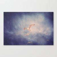 brighton seagulls 2 Canvas Print