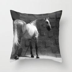 Mestizo Throw Pillow