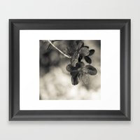 Life In Detail Framed Art Print
