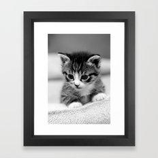 New addition Framed Art Print