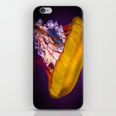 Colourful Jellyfish iPhone & iPod Skin