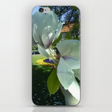 Magnolie iPhone & iPod Skin