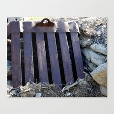 That's Grate Canvas Print