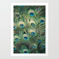 Loads of feathers Art Print
