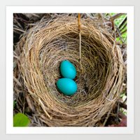 Two Little Robin's Eggs Art Print