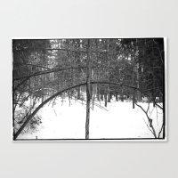 NORWEGIAN FOREST III Canvas Print