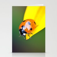 Geronimo! Stationery Cards