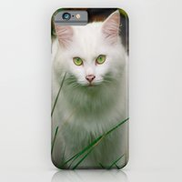 iPhone & iPod Case featuring White Cat by Rick Kirby