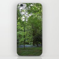 Bluebell Wood iPhone & iPod Skin