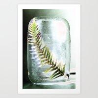 Frozen Fern Art Print