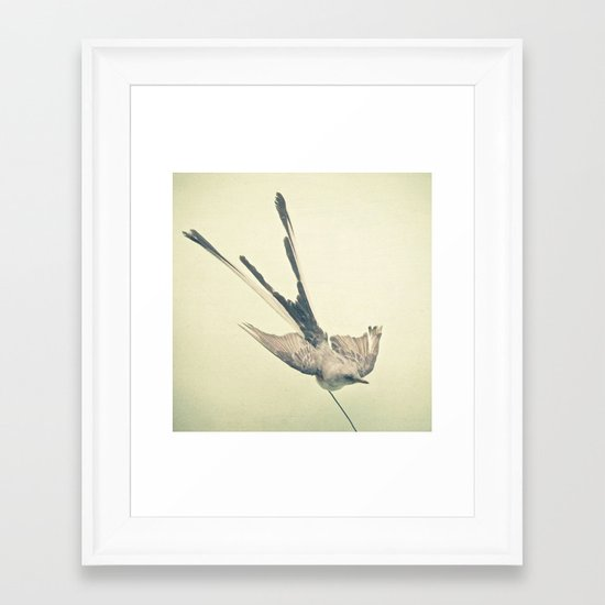 Bird Study #1 Framed Art Print